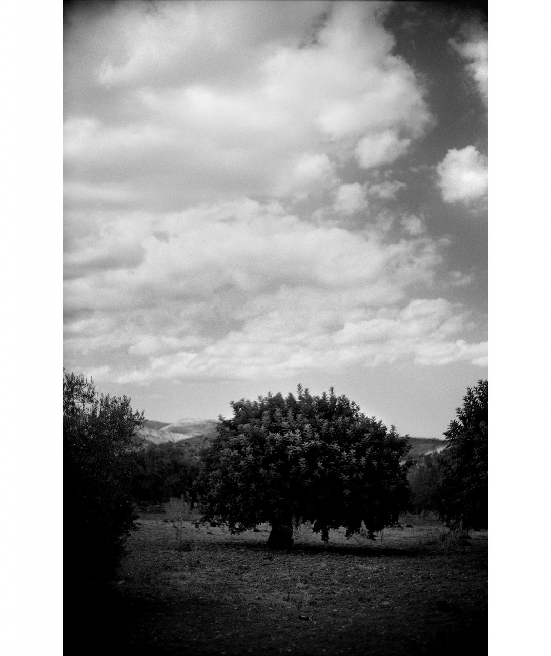 10_Sicily #30 B+W sheet7 frame 34