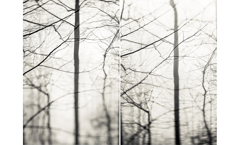 19_Mirror