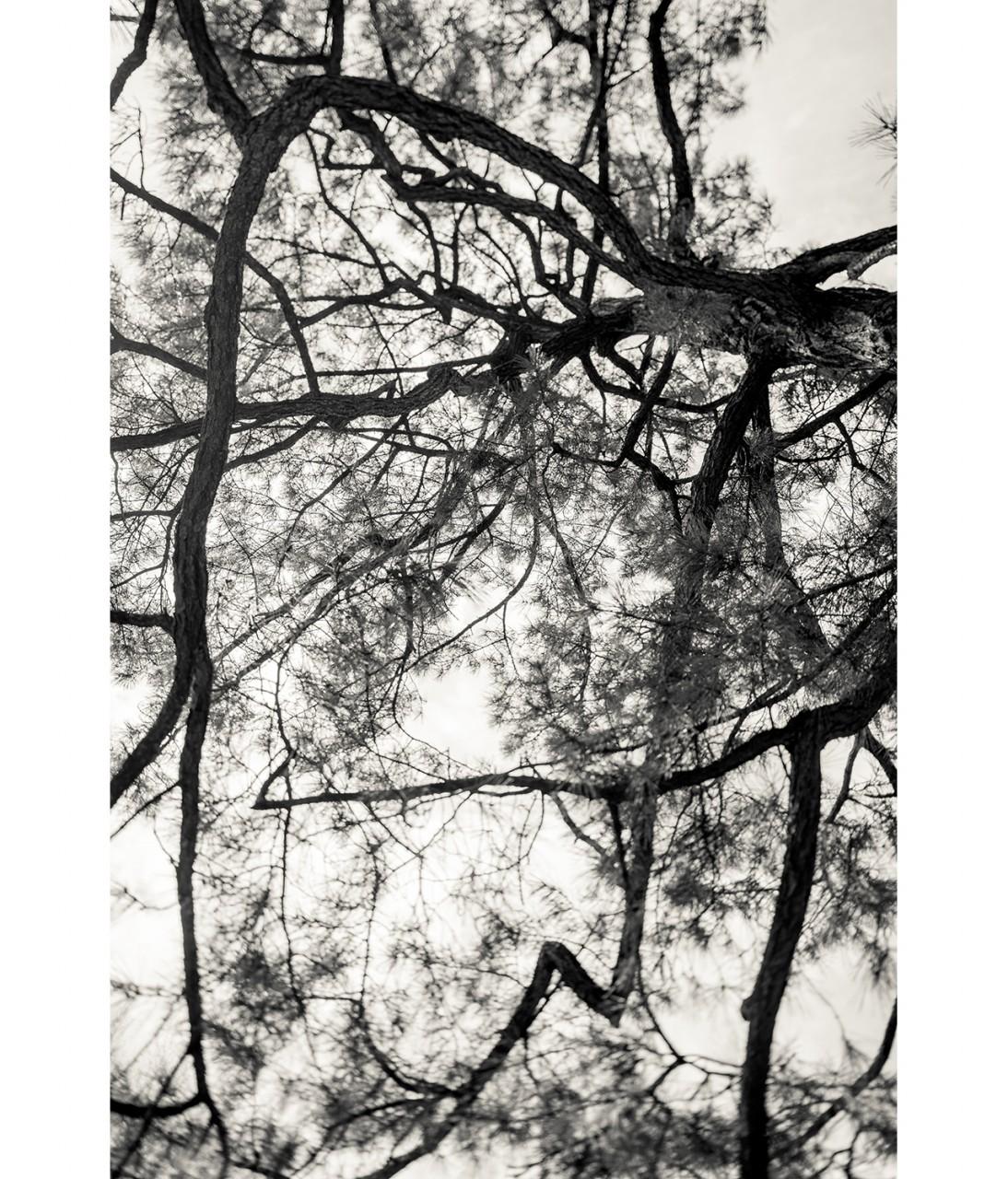 23_Untitled 1064