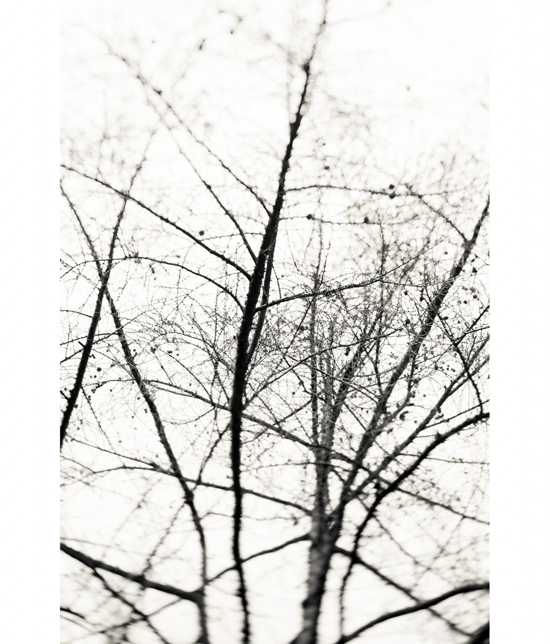 27_Untitled 1309
