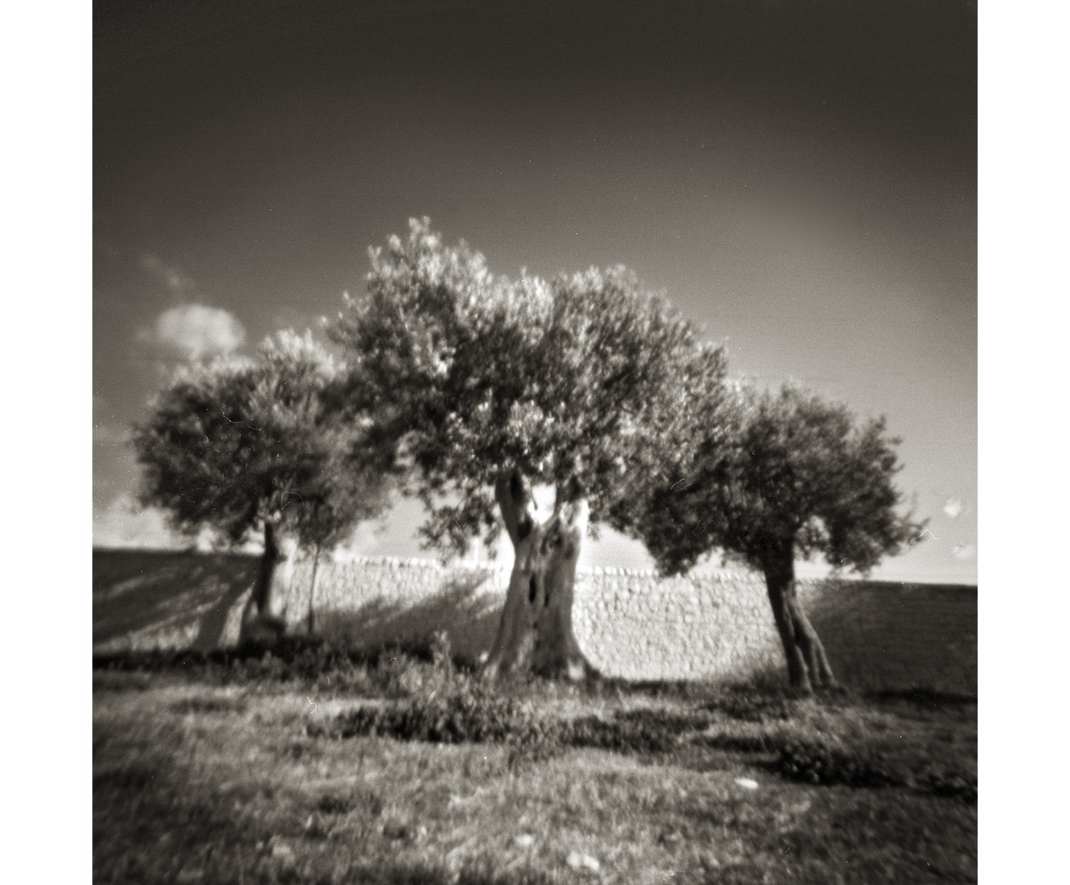 28_Sicily #4 pinhole B+W