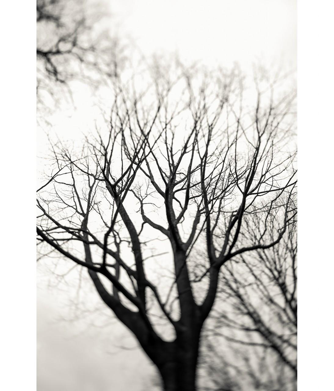 28_Untitled 1393