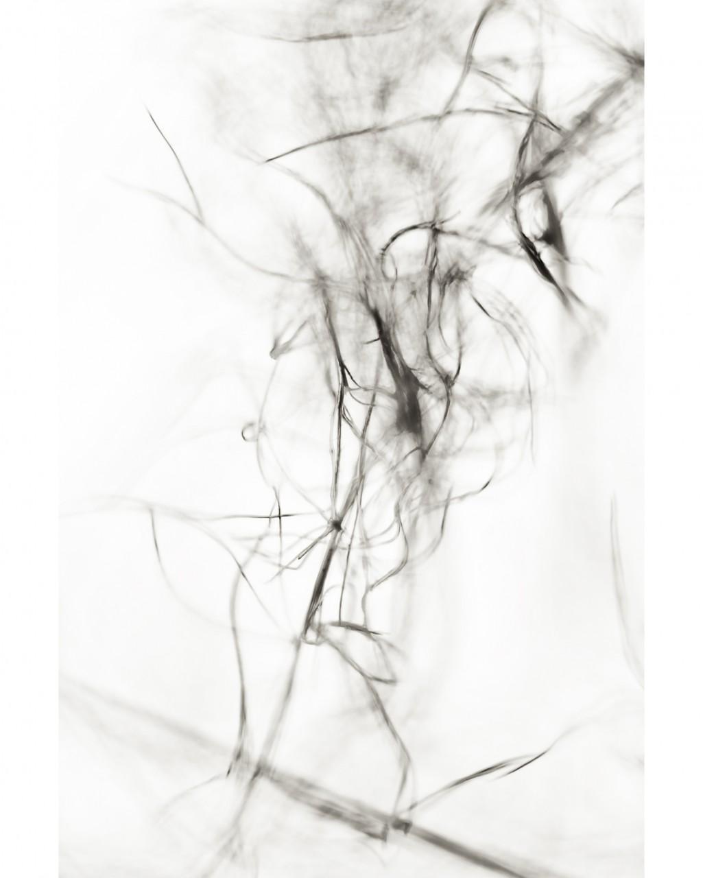 28_Untitled_7767