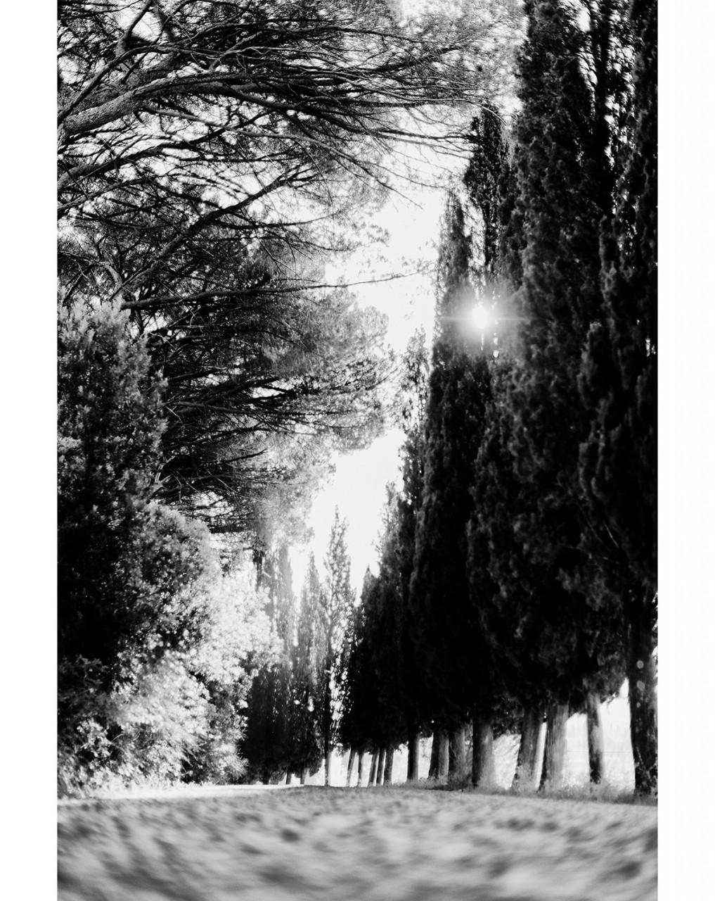 022_TuscanWalk